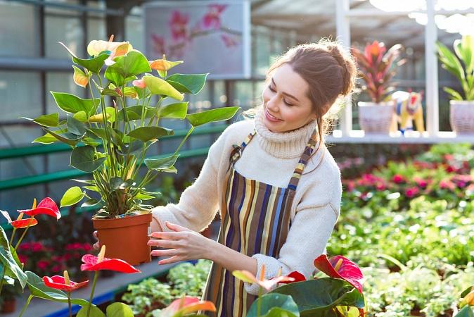 Забота и уход за растениями