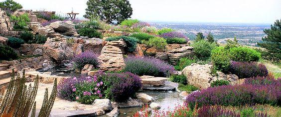 Красивый сад с Астильбией