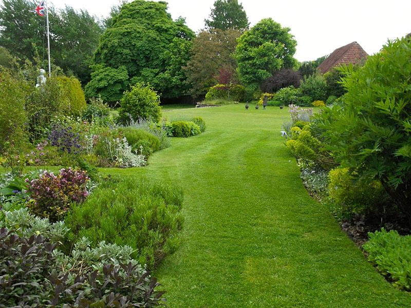 Ухоженный газон в ландшафтном дизайне