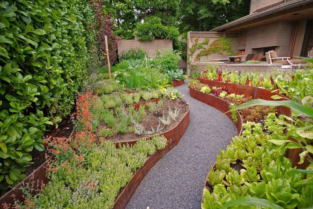 Ландшафтный дизайн огорода с клумбами из овощей и трав