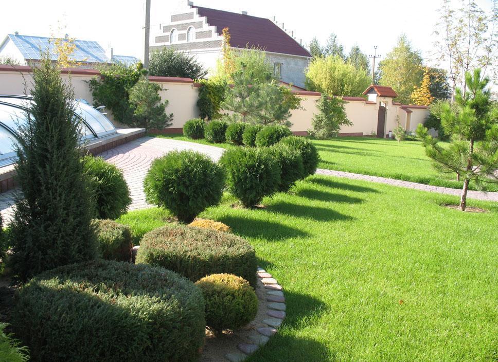 Декоративная подстрижка кустов и деревьев на дачном участке