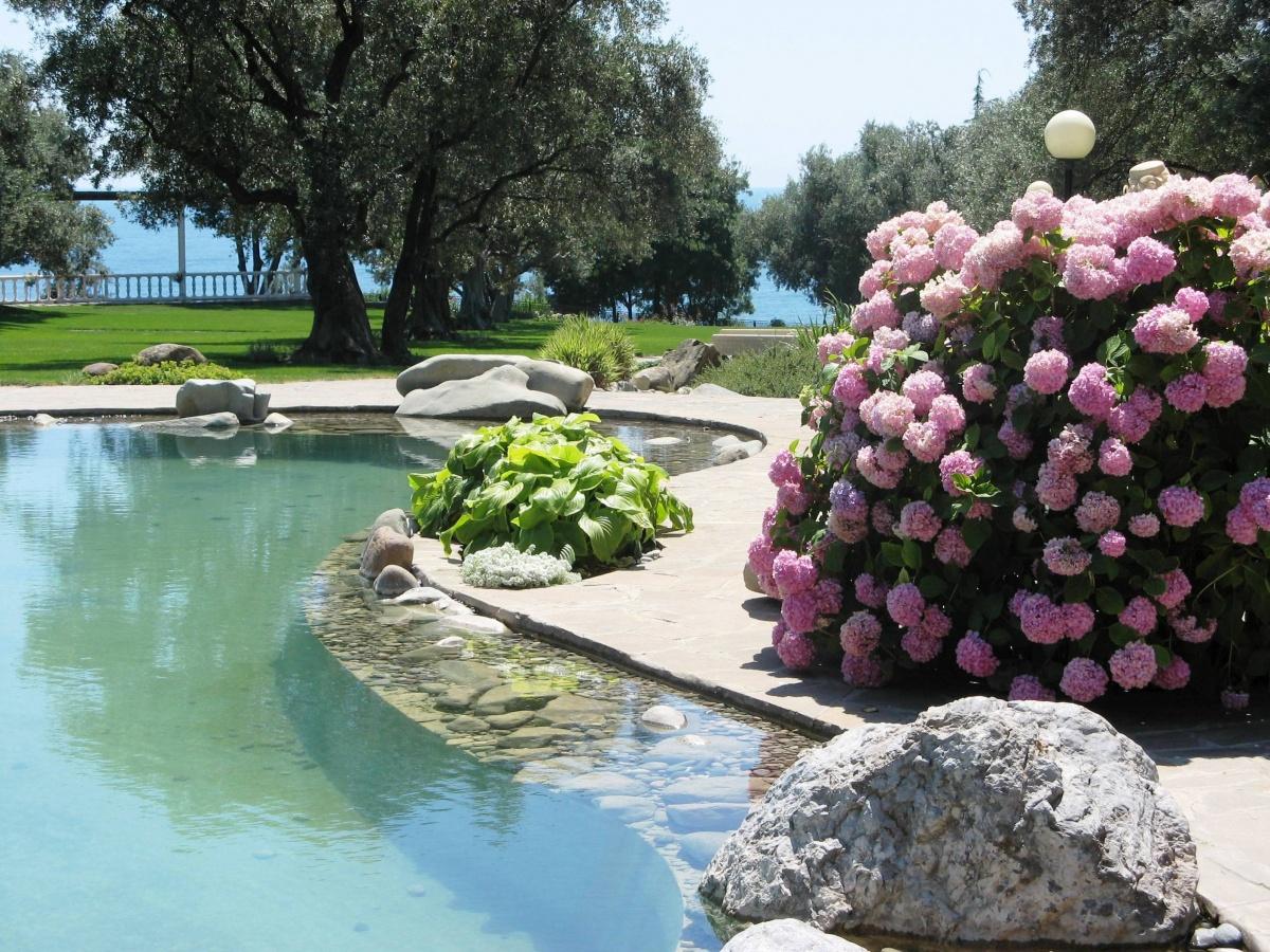 Выбор вида кустарника определяется целью и местом создания композиции