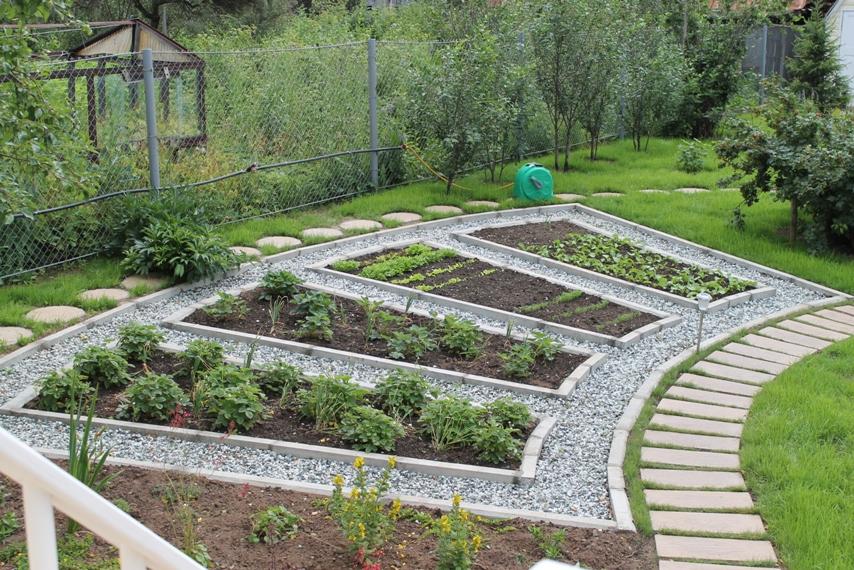 Декоративный огород на загородном участке
