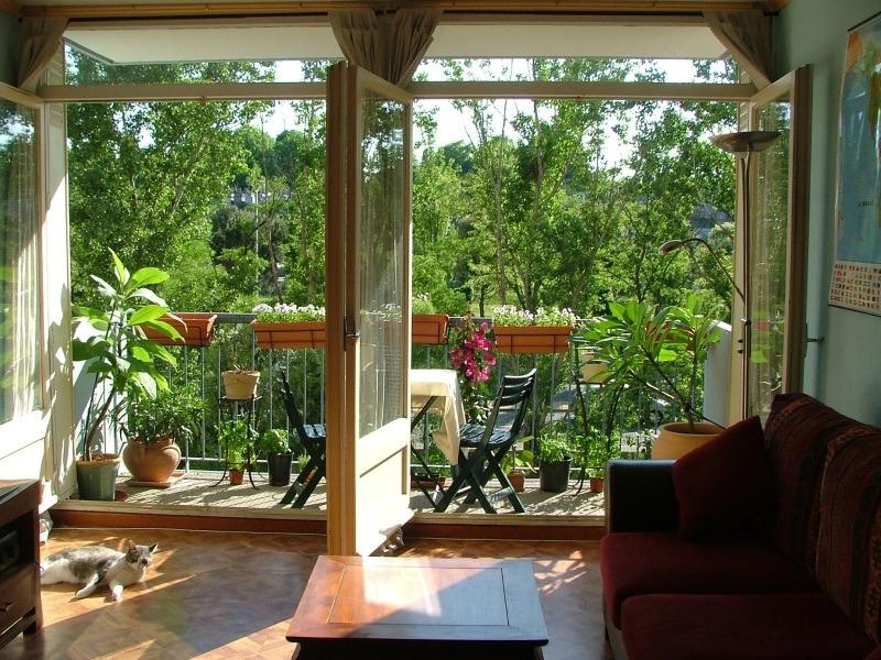 Выращивание различных культур на балконе