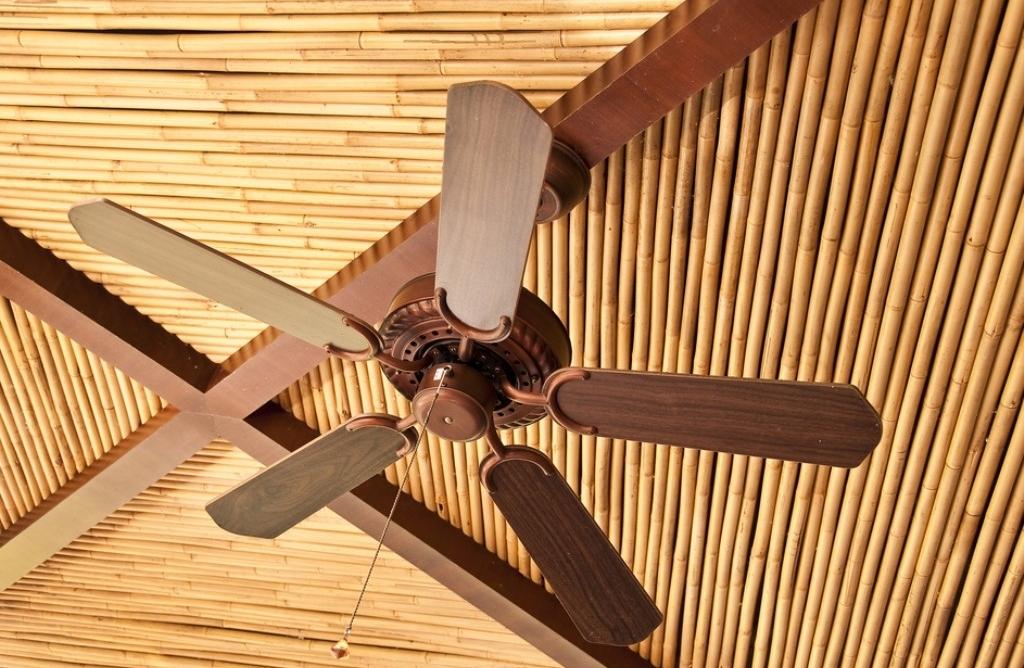 Бамбуковый потолок в гостиной