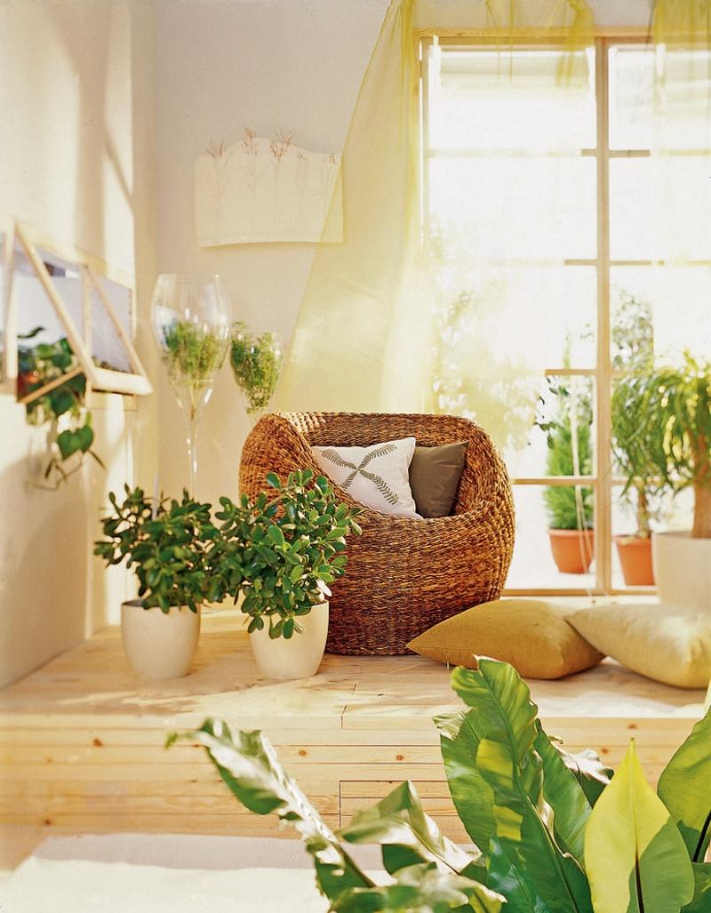 Зелень в гостиной в экостиле