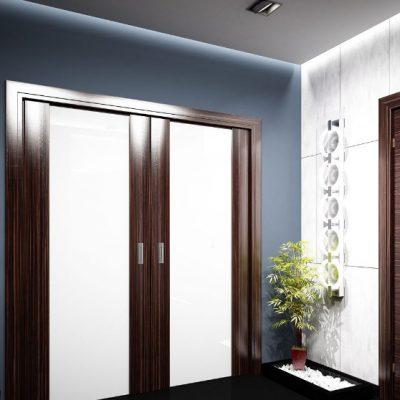 Двойные двери в прихожке