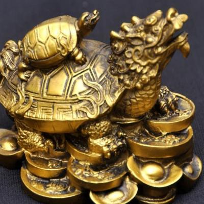 Значение черепахи