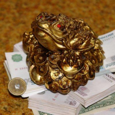 Значение черепахи для денег