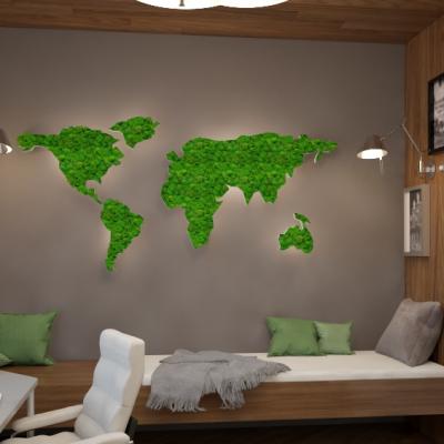 Карта в интерьере стен