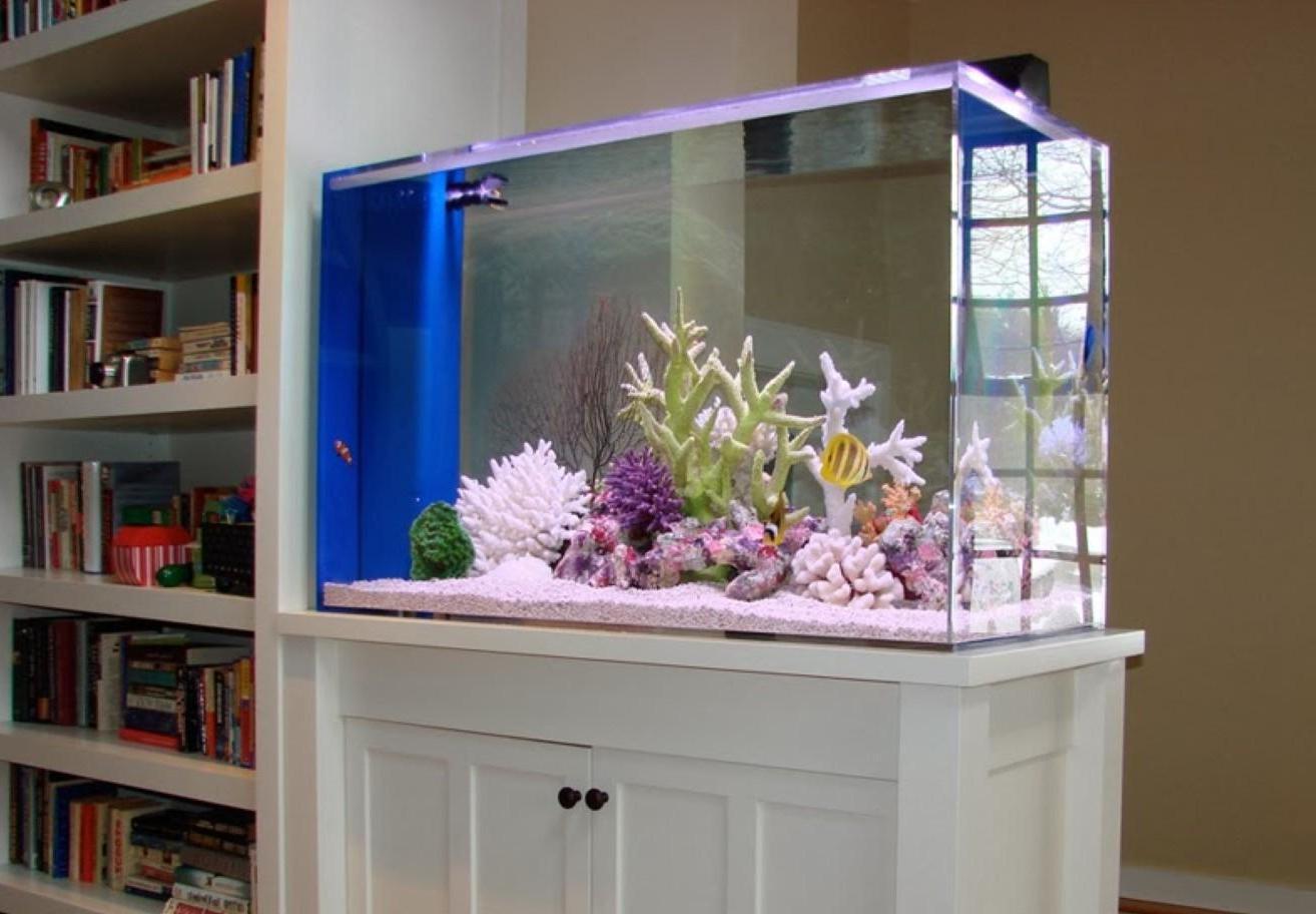 Сухой аквариум в дизайне