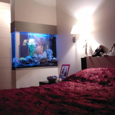 Пример аквариума