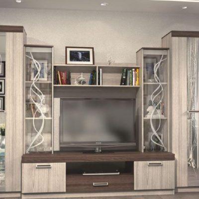 Пример шкафа стенки для гостиной