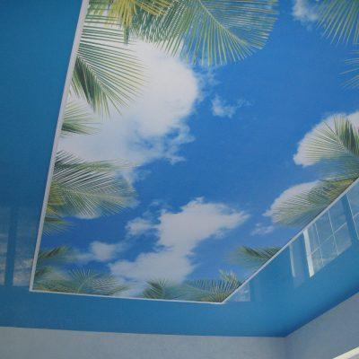 Потолок натяжной