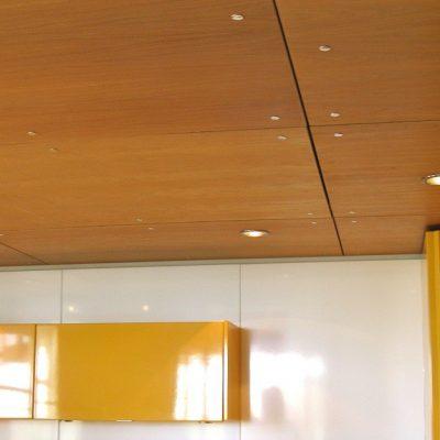 Потолок с фанерой