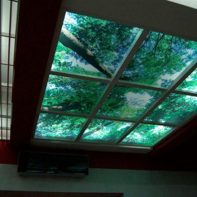 Фото потолок