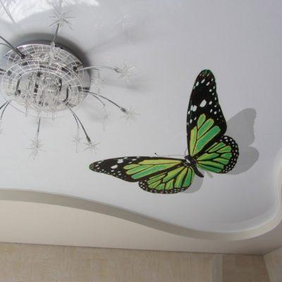 Бабочки - рисунок