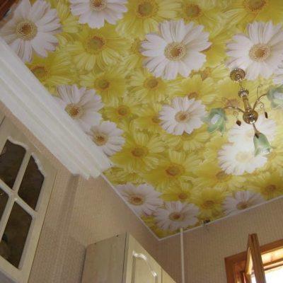 Потолок с ромашками