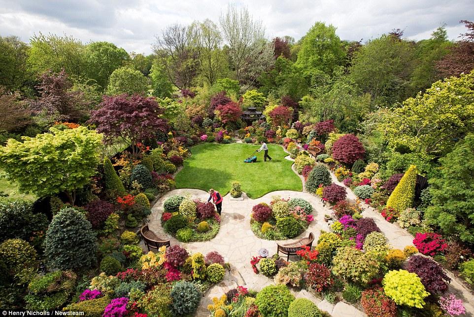 Буйство красок в саду