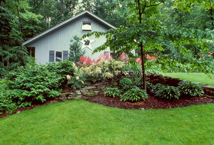 Дом с садом цветущей Астильбии