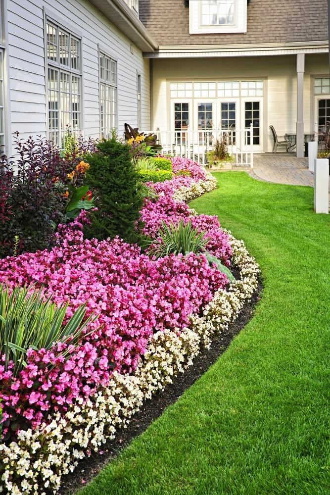 Цветочная лужайка загородом