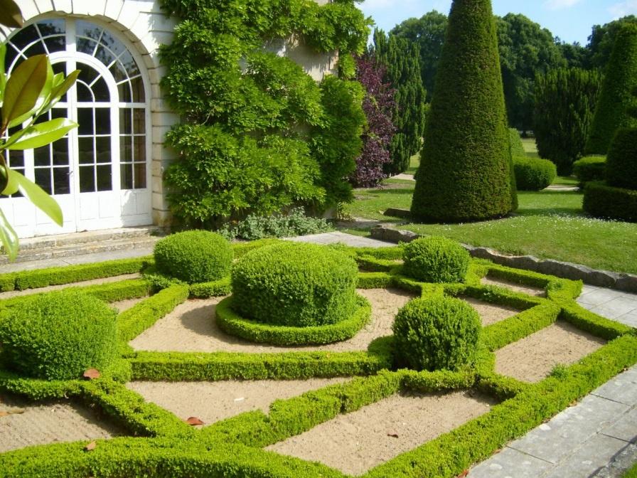 Интересное расположение декоративных кустарников на даче