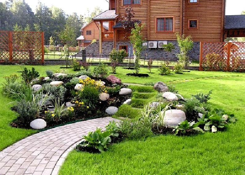 Какие декоративные злаки и травы используют в ландшафтном дизайне