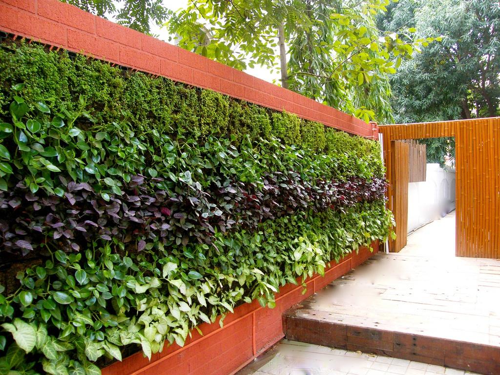 Вертикальный огород в ландшафтном дизайне
