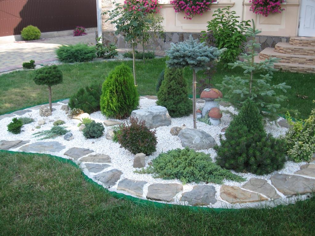 Горная сосна в ландшафтном дизайне — хорошая идея для дизайнеров и садоводов