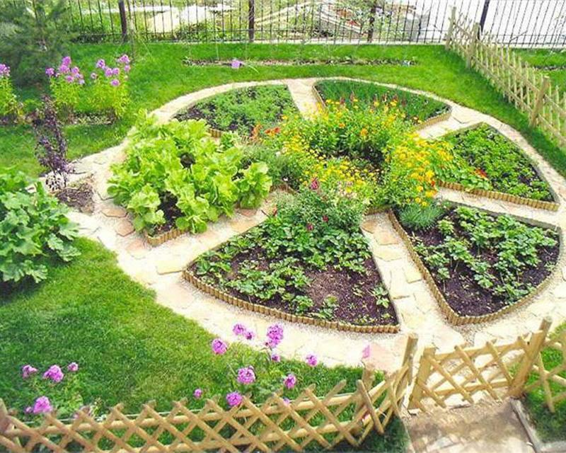 Красиво оформленный огород частного дома в деревне