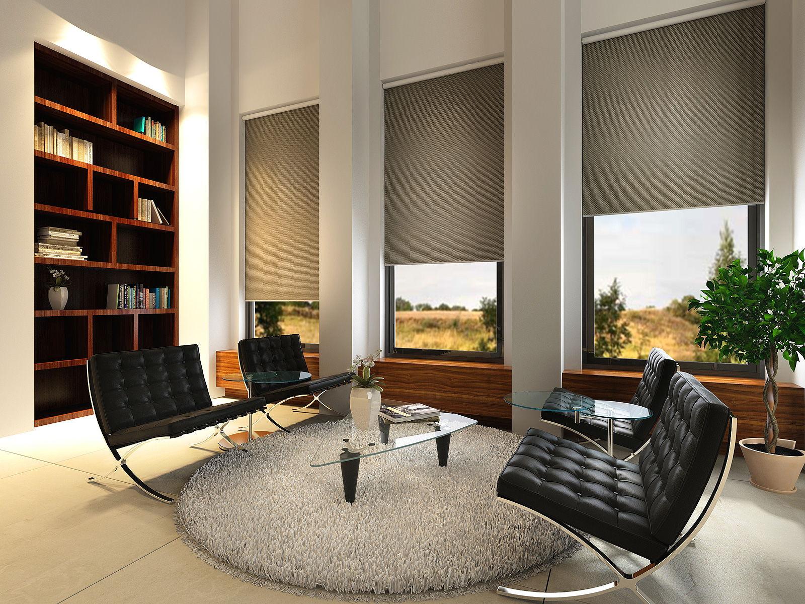 Рулонные шторы прекрасно подойдут для рабочего кабинета