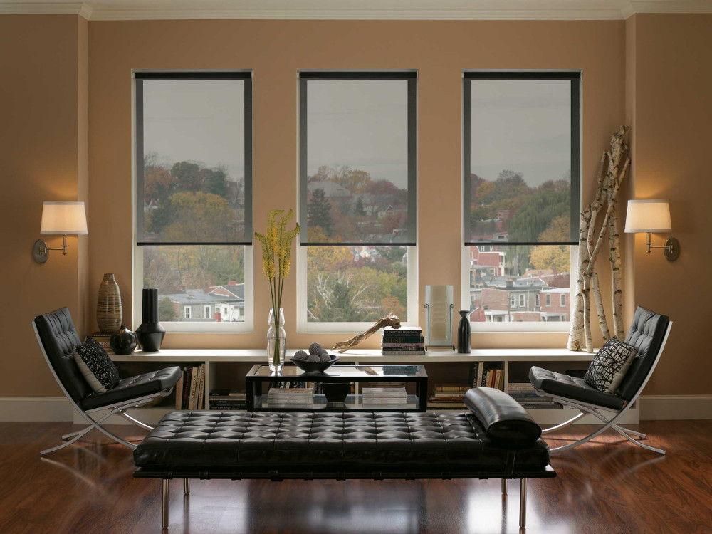 Полупрозрачные рулонные шторы не будут привлекать к себе лишнего внимания, но сделают кабинет более подходящим для работы