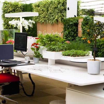 Зеленый кабинет в стиле модерн