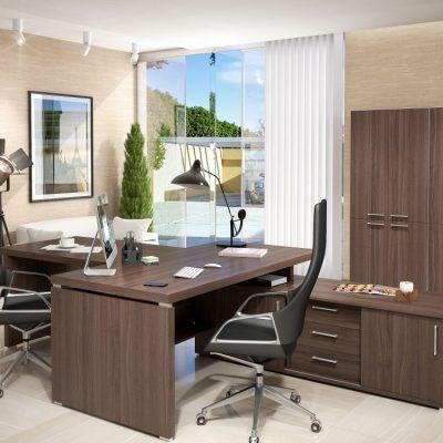 Применение дерева в интерьере кабинета