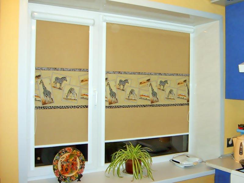 Рулонные шторы блэкаут не мешают расположению на окне любых предметов