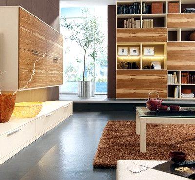 гостиная в стиле модерн с книжным шкафом