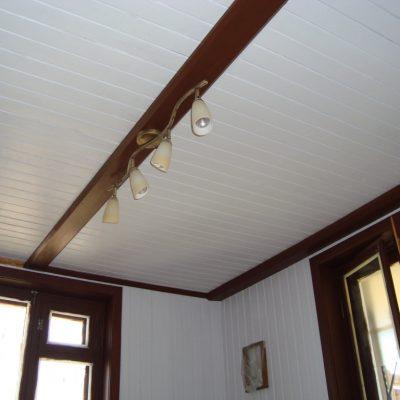 Потолок из крашенной вагонки