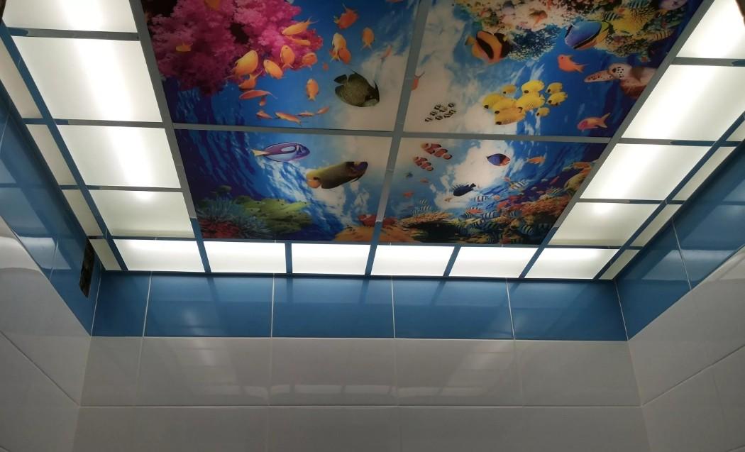 стеклянный потолок с фотопечатью многих них