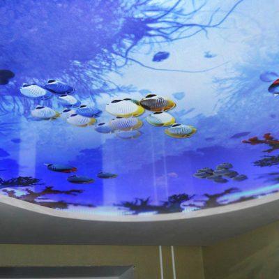 Фотопечать аквариум